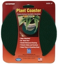Absorbent Plant Coasters by Drymate USA. Dark Green.